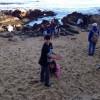 Exploring at the seashore